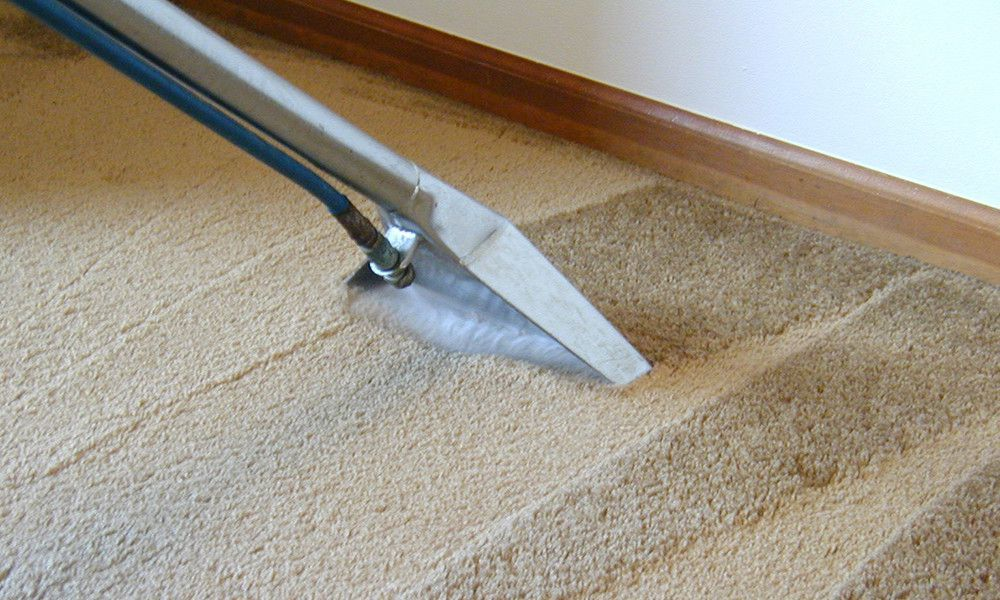 How to clean the carpet at home